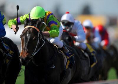 bwin Pferdewetten – Bewertung und Test vom Wettangebot