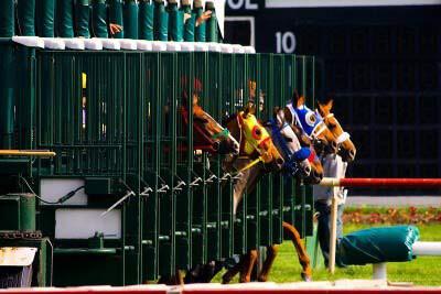 oneXtwo – Wettanbieter für Pferdewetten & Hundewetten