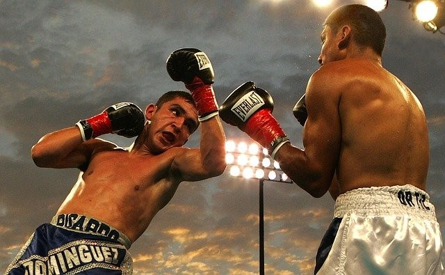 Boxfight - Boxen Wetten