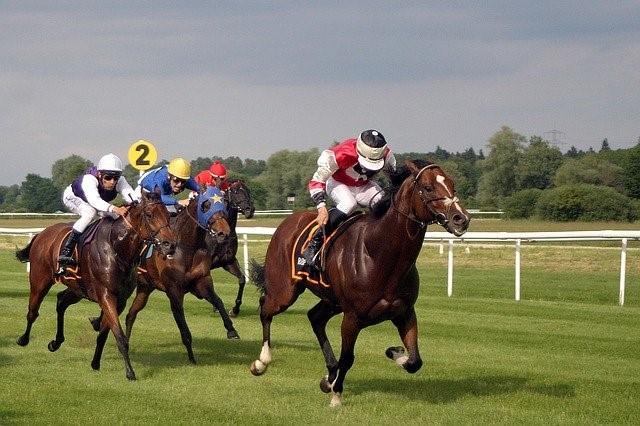 Pferderennen 1 - Cheltenham Wetten