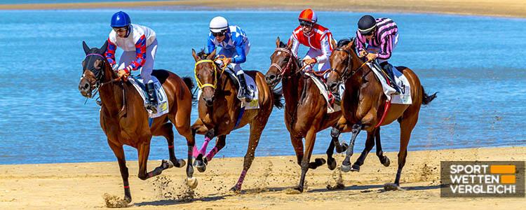 Online Pferdewetten-Ratgeber