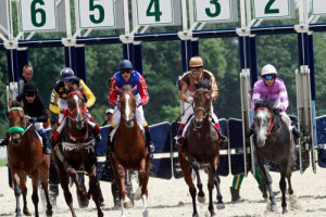 Pferderennen Turnier