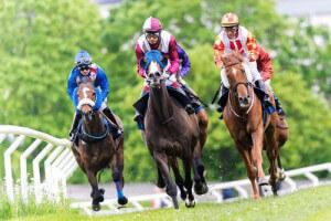 Pferdewetten Ratgeber – alle Inhalte zum Thema