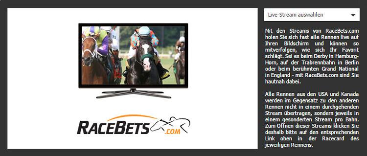 Pferderennen online gucken – Live Streams im Ratgeber